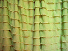 "Chartreuse 1"" Ruffles"